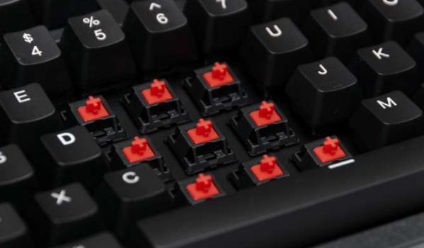 Red switch phù hợp với game thủ